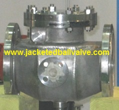 Jacketed Swing Check Valve, Steam Jacketed Non Return Valve