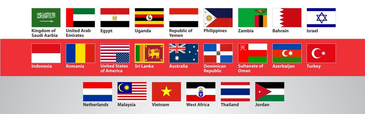Overseas Customer List of Steam Jacketed Valve, Therminol Jacketed Ball Valve, Liquid Sulfur Jacketed Ball Valves and All Types of Industrial Valves