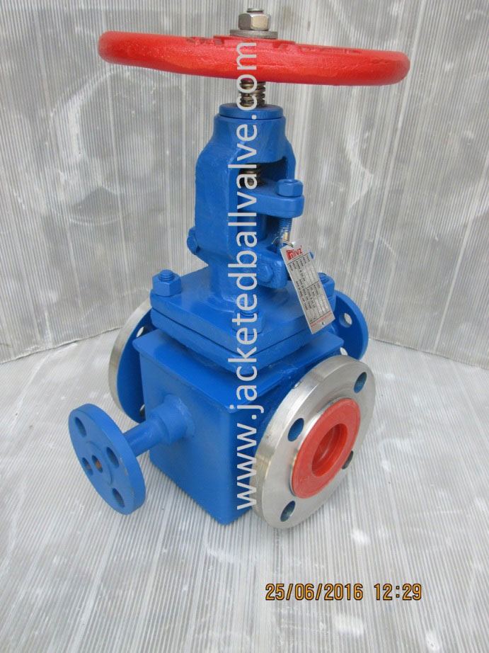 Partial Jacketed Globe Valve