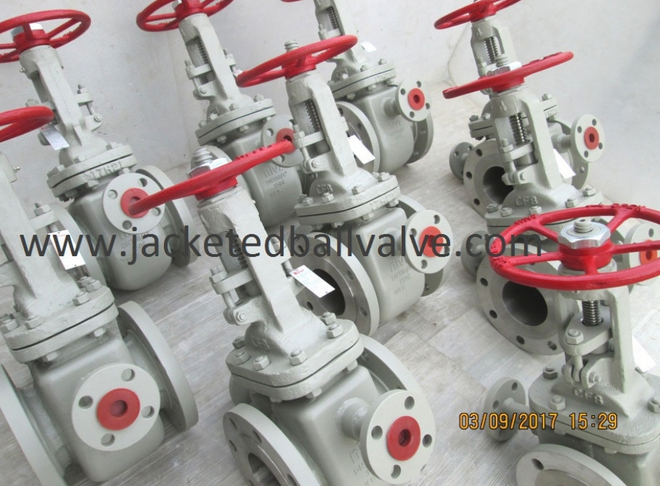 Jacketed Gate Valves Stockist